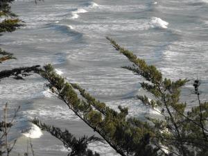 Binic hiver 2015